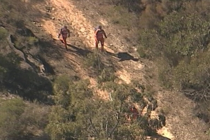 Search underway for Chinese bushwalker missing in south Sydney national park