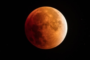 Lunar eclipse 2019: a partial eclipse falls on 50th anniversary of Apollo 11 moon landing – how to watch from the UK