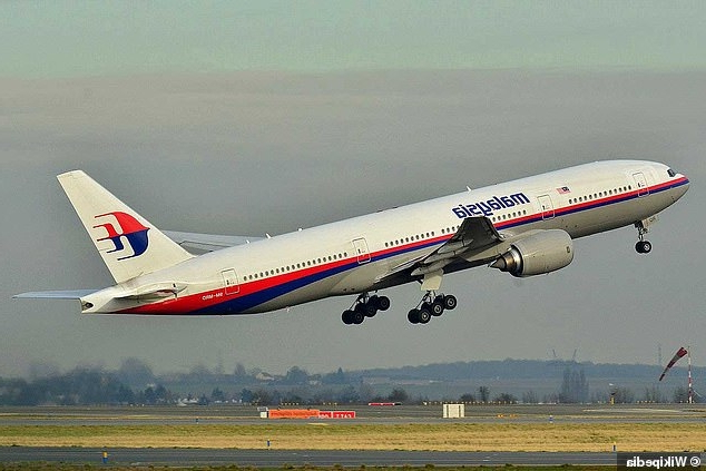 MH370 investigators discover 'mystery load weighing 200lb' was added to the cargo flight list AFTER take-off