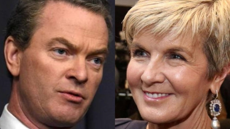Australia: Christopher Pyne and Julie Bishop's new jobs do