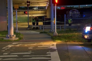Victim, suspected driver in fatal hit-and-run pedestrian crash identified