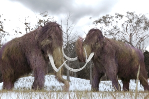 Russian Land of Permafrost and Mammoths Is Thawing