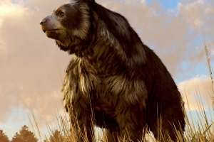 Humans, not glaciers, likely doomed Ice Age cave bears
