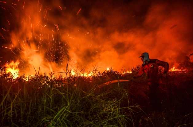 Wildfires are burning around the world. The most alarming is in the Amazon rainforest.