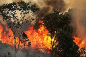 Bizarre theory for cause of devastating Amazon fires