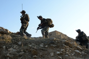 Combat deaths in Afghanistan reach a five-year high