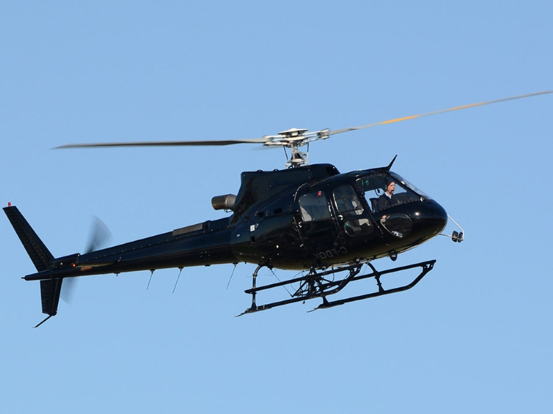 Cross-border drug bust near Princeton involved helicopter chase