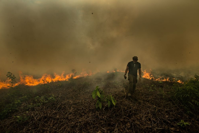 How are the raging fires in the Amazon rainforest affecting climate change?
