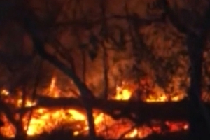 Smoke hazard warning after Noosa golf course fire