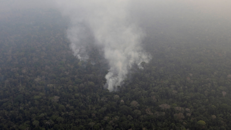 With Amazon Ablaze, Brazil Faces Global Backlash: 'Lungs of the Earth Are in Flames'