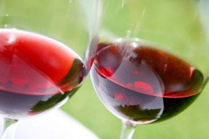 Red wine is good for gut health, study finds