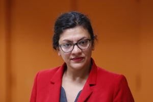 Rashida Tlaib posed for photos with controversial anti-Israel group