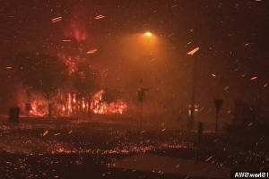 Hellish scenes as bushfires tear through Queensland towns destroying at least a dozen homes and leaving a suburb glowing red hot - and the worst is yet to come
