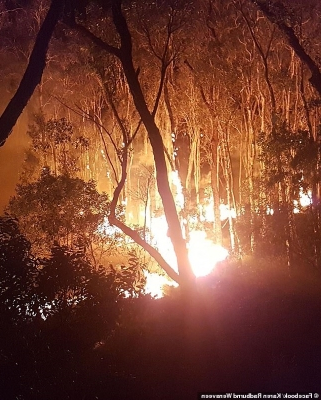 Text messages 'expose teenage arsonists as responsible' for a raging bushfire that's forced hundreds of terrified locals to flee their homes