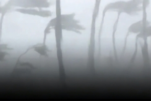 Dramatic video from inside Bahamas house shows Hurricane Dorian ripping it apart