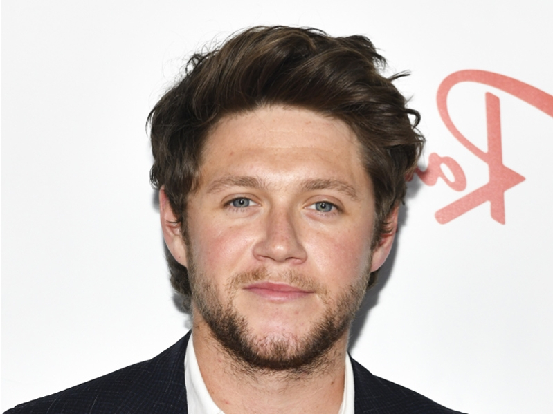 One Direction used to lie about Niall Horan's sex life