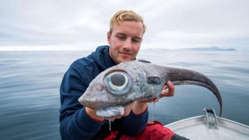 Fisherman gets shock as he reels in 'dinosaur-like' fish with huge eyes