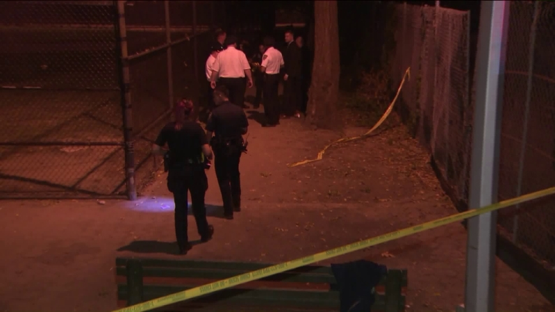 Woman, 26, shot in the back in Harlem park