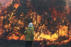 Rain not enough to extinguish NSW fires