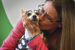 Woman is reunited with missing dog 12 years later and 1,000 miles from home