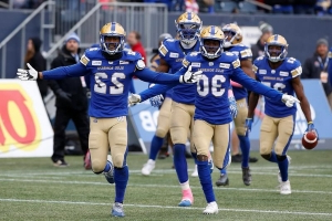 Stampeders, Blue Bombers to square off in crucial home-and-home series