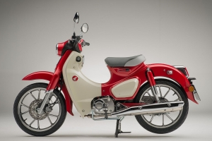 Honda Adds Super Cub And XR650L To 2020 Lineup