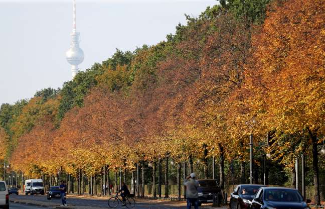Slide 28 of 30: Autumnal trees of the Tiergarten park are pictured in front of the television tower in Berlin, Germany, October 15, 2019. REUTERS/Fabrizio Bensch TPX IMAGES OF THE DAY