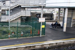 Irish Rail apologises as youths 'armed with sticks and poles' block an exit at DART station