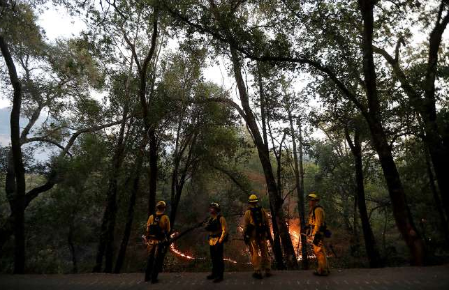 a group of people standing next to a tree: Firefighters keep an eye on a spot fire in the Alexander Valley, near Geyserville, Calif., on Friday, Oct. 25, 2019.