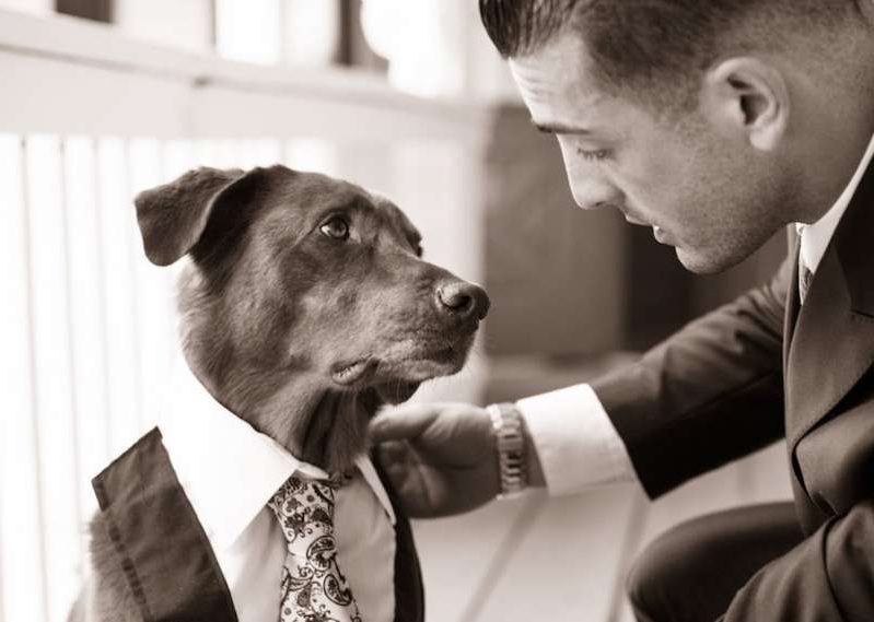 a man wearing a suit and tie standing next to a dog