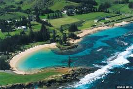 a pool next to a body of water: A survey of more than 450 of Norfolk Island's 1,800 residents found that 37 per cent wanted free association with New Zealand (pictured: Norfolk Island)