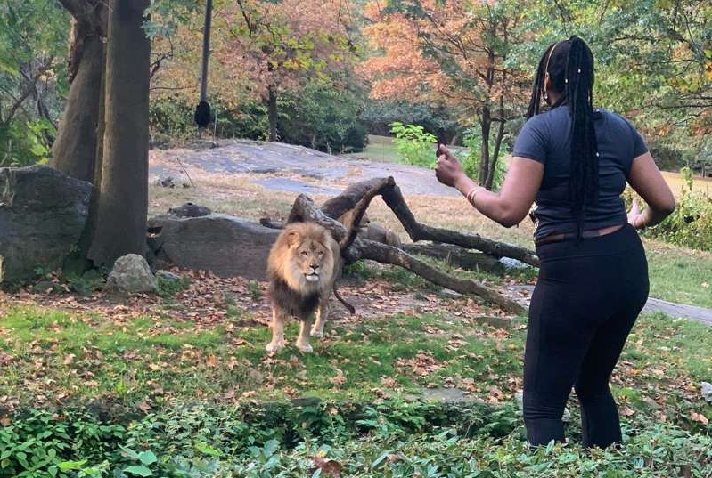 a person holding an animal: Myah Autry was captured on video entering the lion's enclosure at the Bronx Zoo.