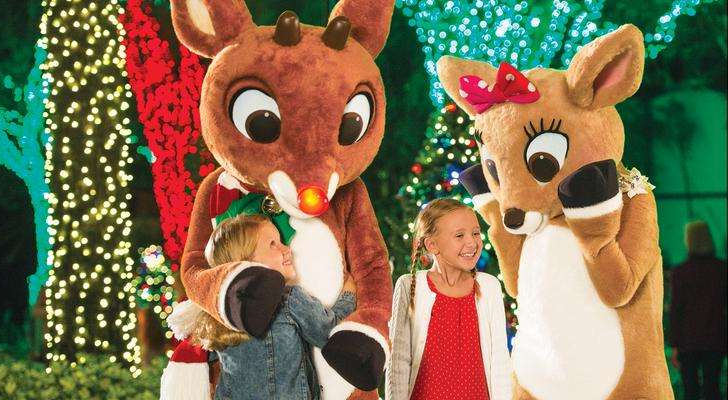 a group of stuffed animals: Rudolph's ChristmasTown at SeaWorld Orlando.
