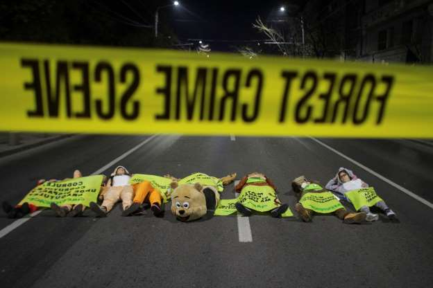 Activists in animal costumes lie on the road during a protest against widespread illegal logging and lack of policy response that has left two foresters dead earlier this year