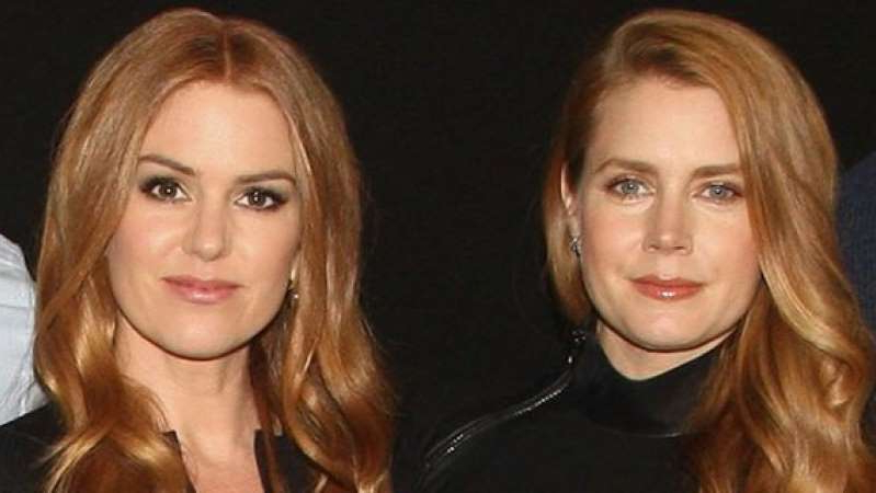 Amy Adams, Isla Fisher posing for the camera: Amy Adams and Isla Fisher