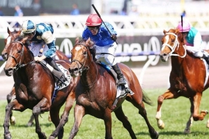 Big bets start flowing as bookmakers hope for lucky Melbourne Cup day