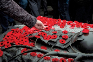 Remembrance Day should be a national holiday