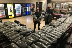 NYPD seize 'marijuana' only to discover it was legal hemp
