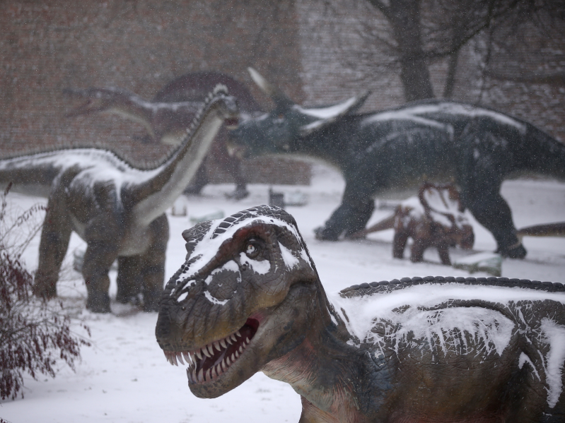 animal on the snow: A dinosaur park sees freezing weather and snowfall in Belgrade, Serbia, February 26, 2018.
