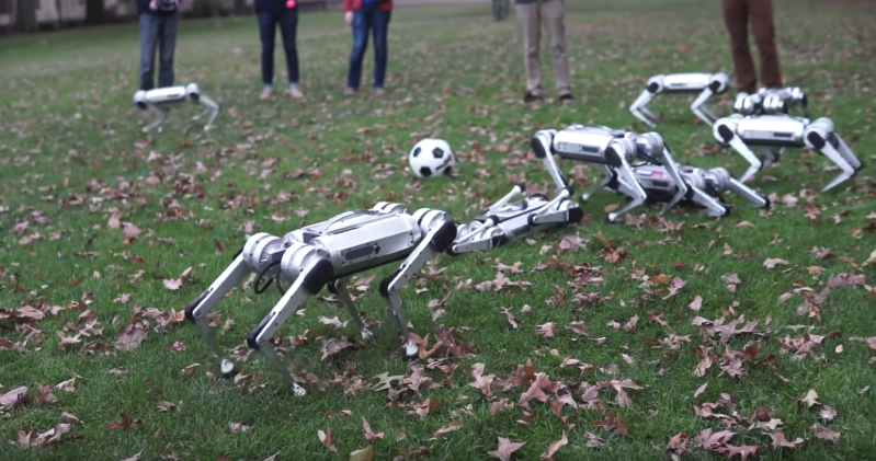 MIT made an army of tiny, 'virtually indestructible' cheetah robots that can backflip and even play with a soccer ball — see them in action in this new video