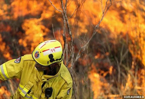 a person wearing a helmet: Warning: Fire bosses warned against complacency and said the fires are likely to spread throughout the day. Pictured: A fire near Taree, mid New South Wales on Monday