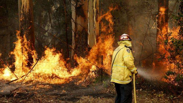 a person standing in front of a fire: More than 60 fires are burning across NSW.