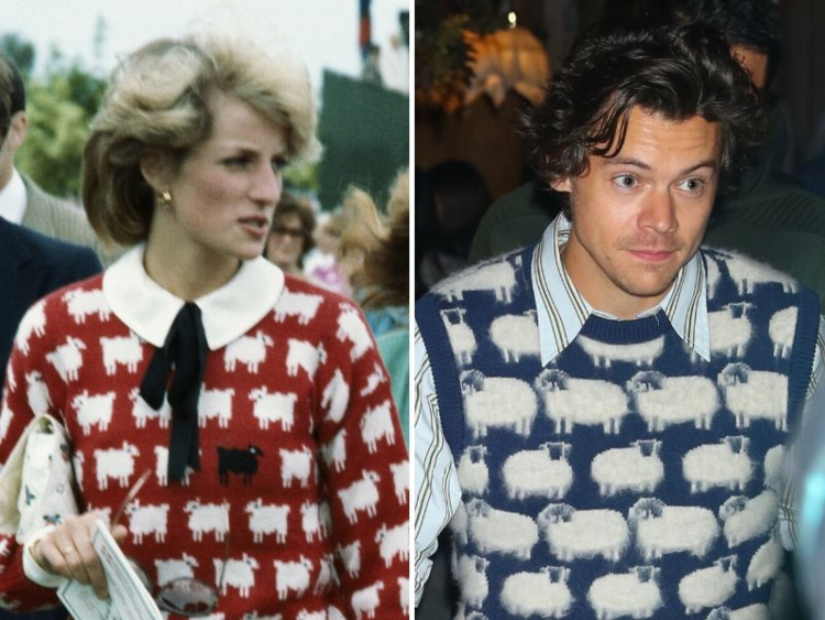 Harry Styles, Diana, Princess of Wales looking at the camera