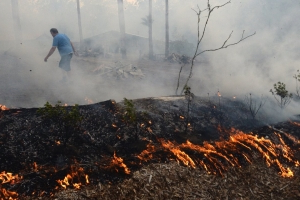 NSW govt accused of fuelling fires by slashing number of park rangers