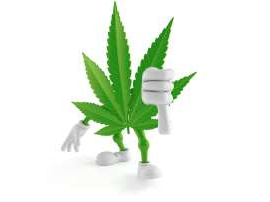 a close up of a toy: Cannabis leaf with arms and legs giving a thumbs down