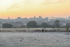 Fog and frost expected as UK heads for coldest night so far