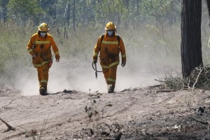 Teenagers arrested over grassfire in south-west Sydney