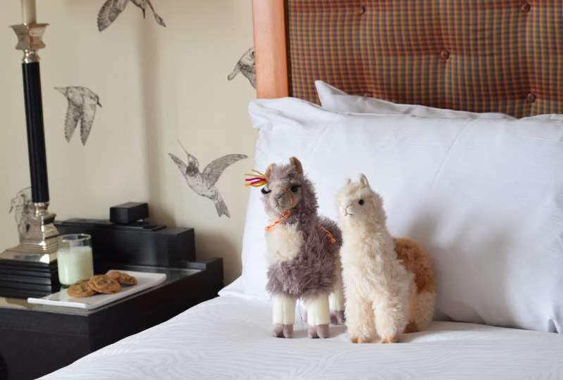a white dog lying on a bed: Stuffed animals are included in Kimpton Monaco Portland's llama hotel package. (Kimpton Hotels)