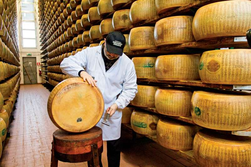 a man standing in front of a barrel: A master grader at Italy's Parmigiano-Reggiano Consortium tests the quality of a wheel of Parma's famed cheese.