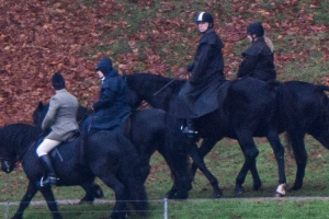 Pictured: Andrew and Queen out horse riding as charities' reviews continue